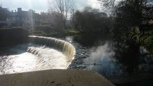 Dartry park, Dublin